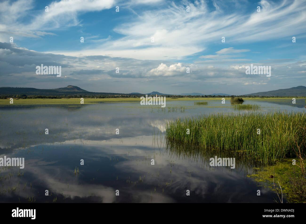 Lake Cuitzeo, Michoacan, Mexico, North America - Stock Image