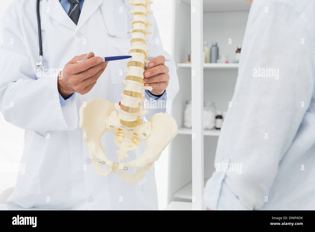 Mid section of doctor explaining the spine to patient - Stock Image
