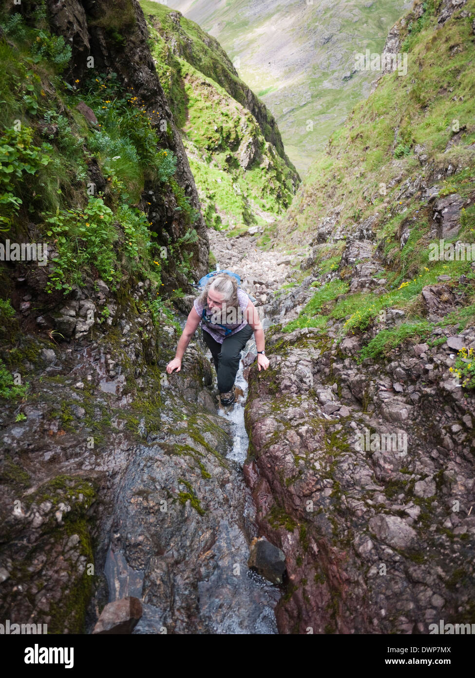 A female hill walker scrambles up Skew Gill towards the Band on Great End - on the Scafell massif, The Lake District, Cumbria - Stock Image