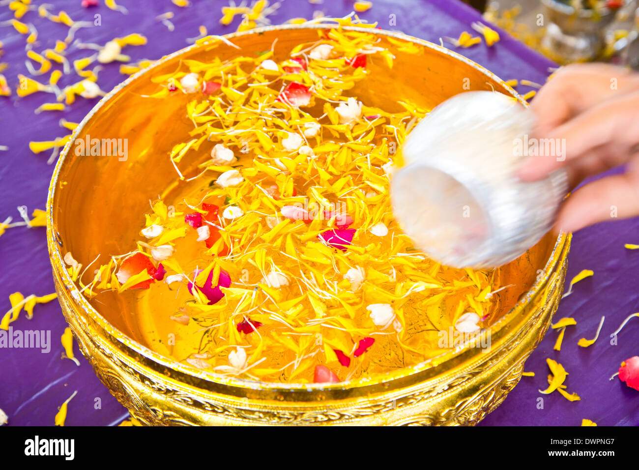 Water in bowl mixed with perfume and flowers for Songkran festival, Thailand - Stock Image