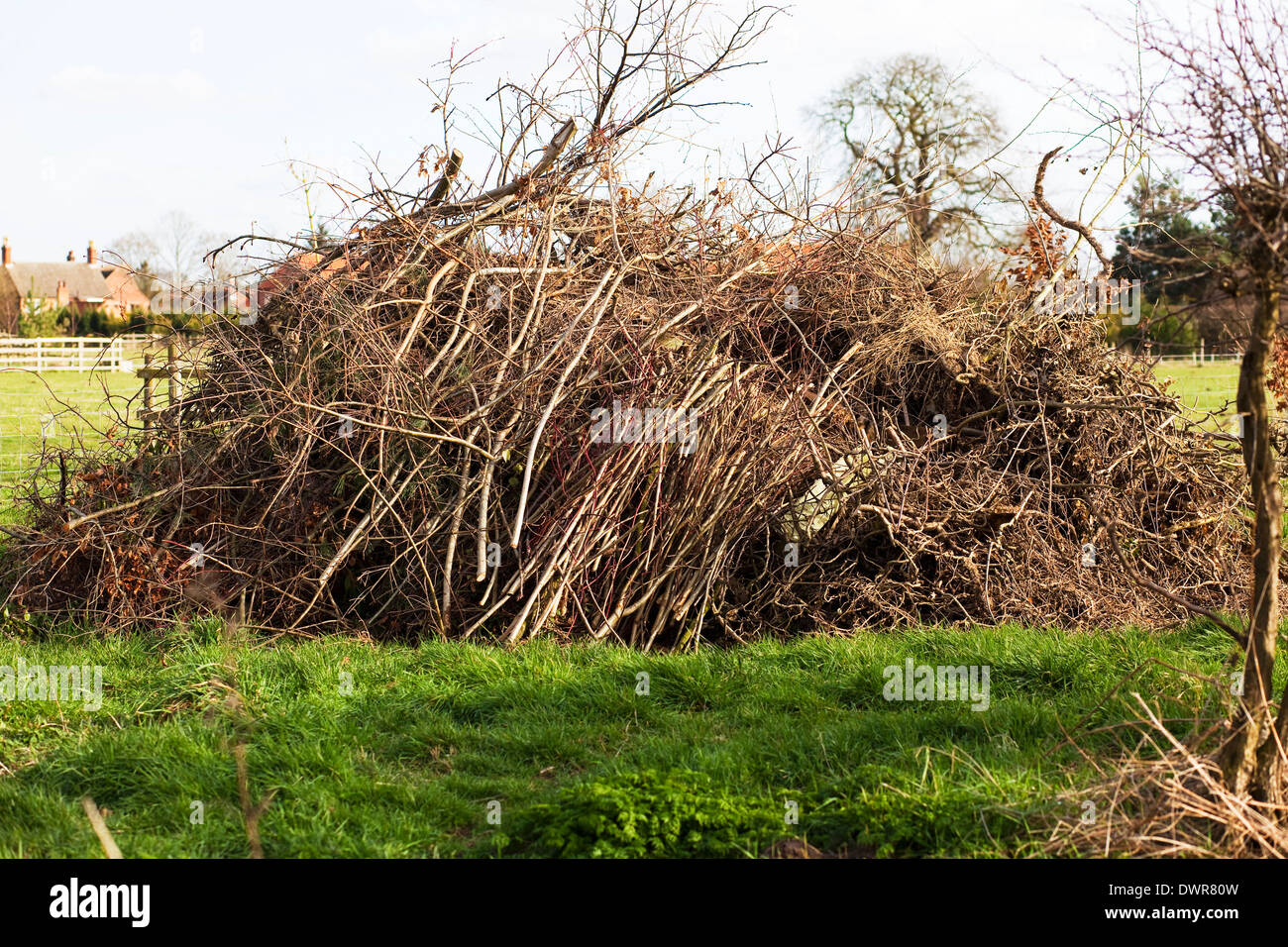 branches piled up to be burned as a bonfire - Stock Image