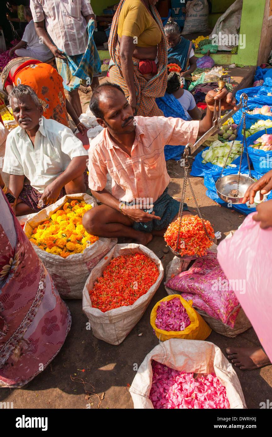 South Southern India Tamil Nadu Madurai flower market man male sells sacks marigolds arali jasmine for garlands torans malas - Stock Image