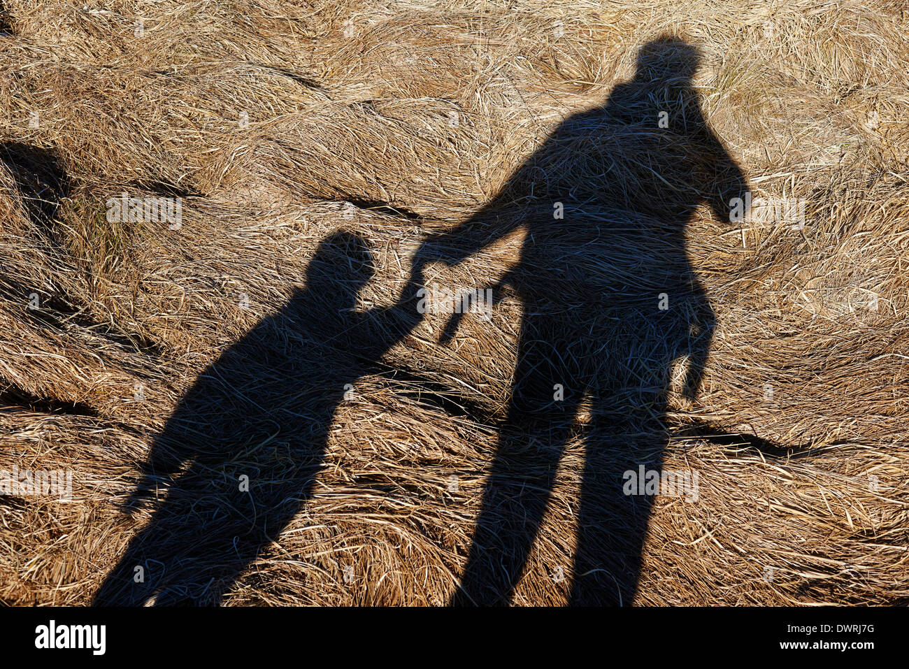 Spring Silhouettes And Shadows >> Selfie Shadow Portrait Of Photographer Father With His Daughter