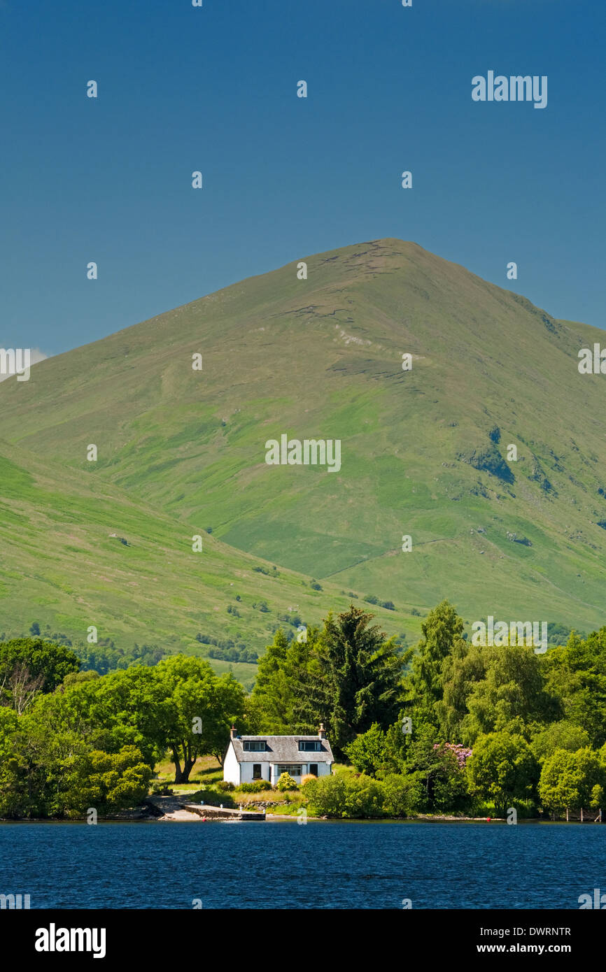 The island of Inchfad in Loch Lomond. The Luss Hills are in the background. - Stock Image