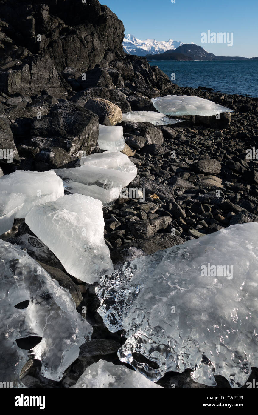 Large ice chunks on a beach in Southeast Alaska on a sunny day. - Stock Image
