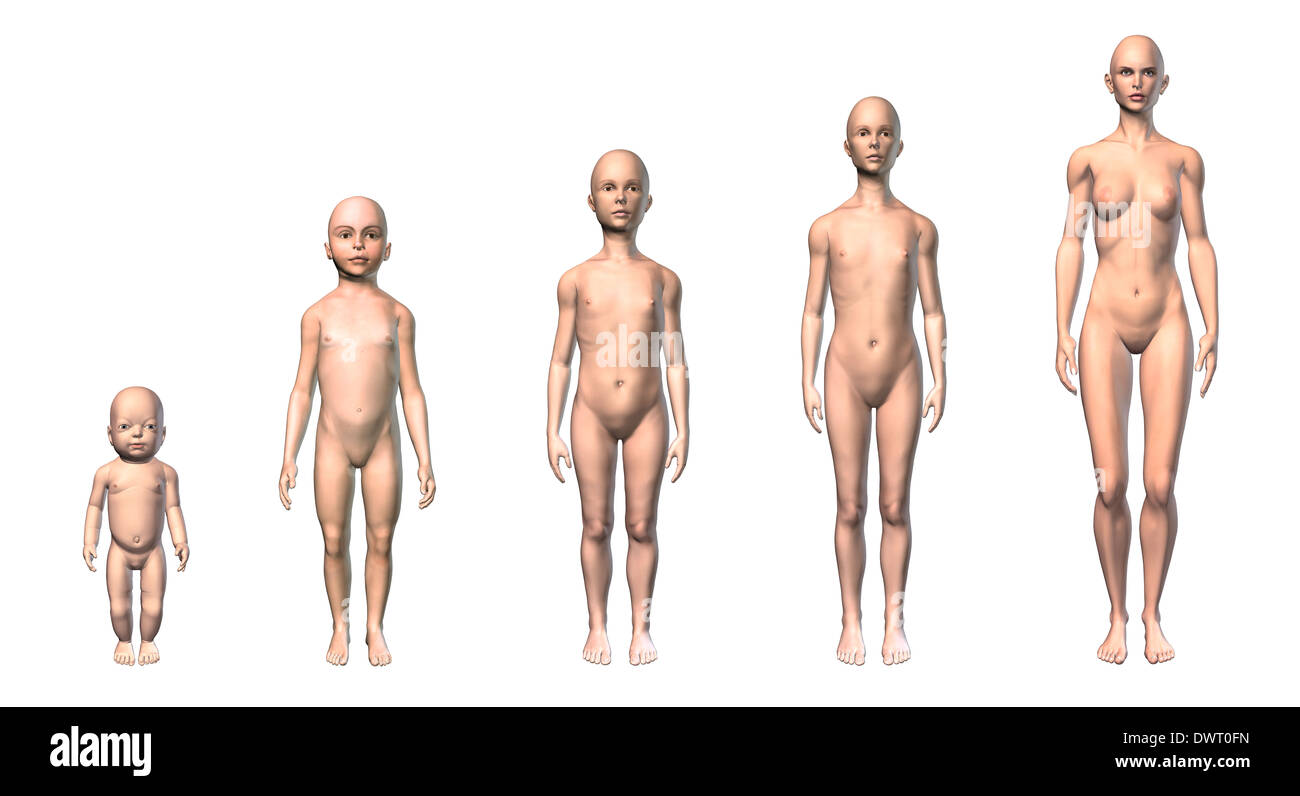 Female Human Body Scheme Of Different Ages Stages Showing Five