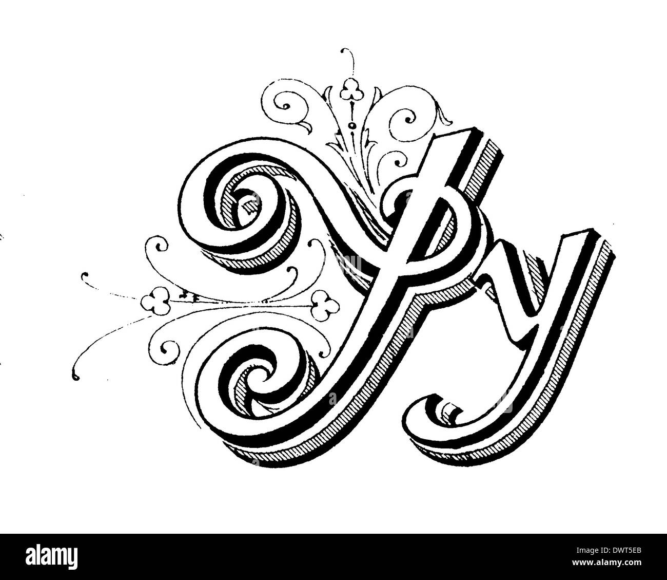 Alphabetic Character Letter Y