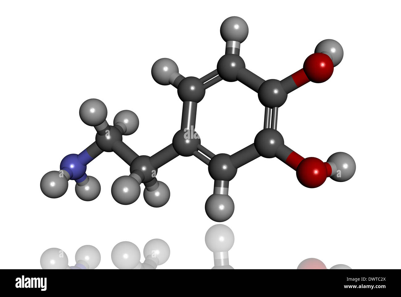 Dopamine Neurotransmitter Stock Photos & Dopamine ...