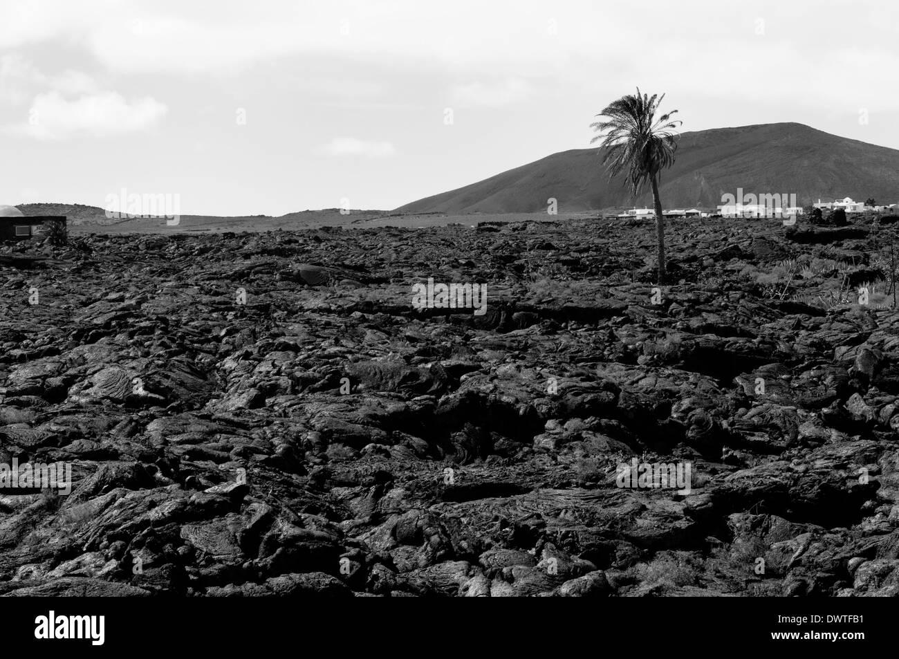 Lunar landscape in Lanzarote, Canarias, Spain. - Stock Image