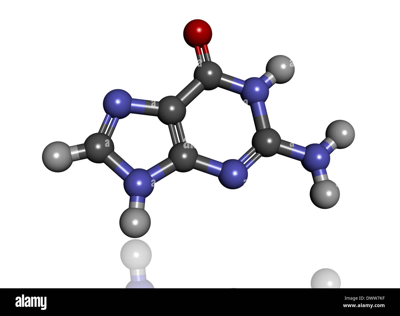Guanine molecule - Stock Image