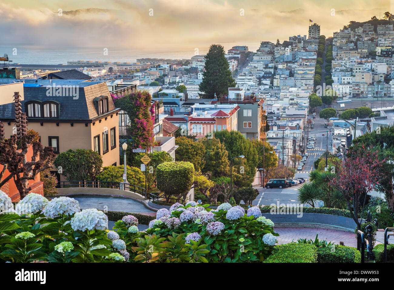 San Francisco early morning view from the top of the Lombard Street - Stock Image