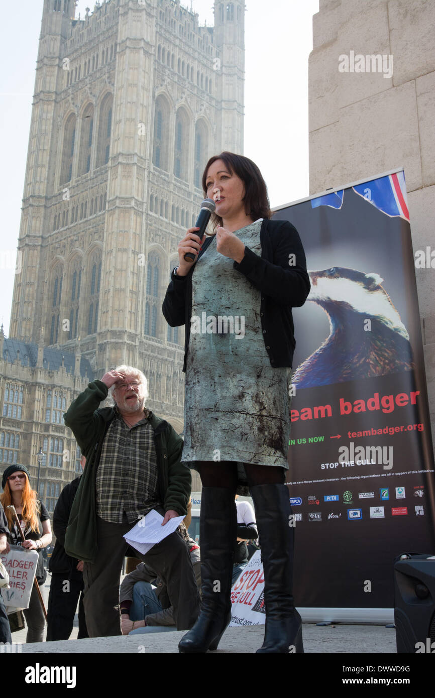 London, UK. 13th Mar, 2014. Kerry McCarthy MP addresses the crowd as protesters gather outside Westminster while a parliamentary debate on the controversial badger cull takes place inside the house of commons. Badgers have been linked to the spread of bovine tuberculosis in cattle and experimental culls of badgers were carried out in 2013 in an attempt to stop the spread of the disease. Anti-cull protestors have claimed that the cull is inefficient, inhumane and scientifically flawed. Credit:  Patricia Phillips/Alamy Live News - Stock Image