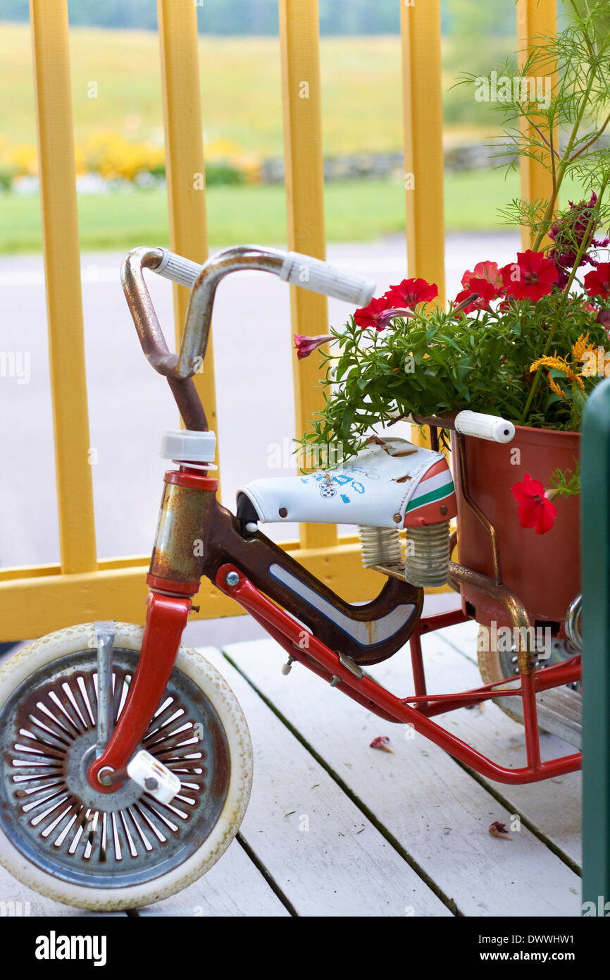 Tricycle Planter Stock Photo Alamy