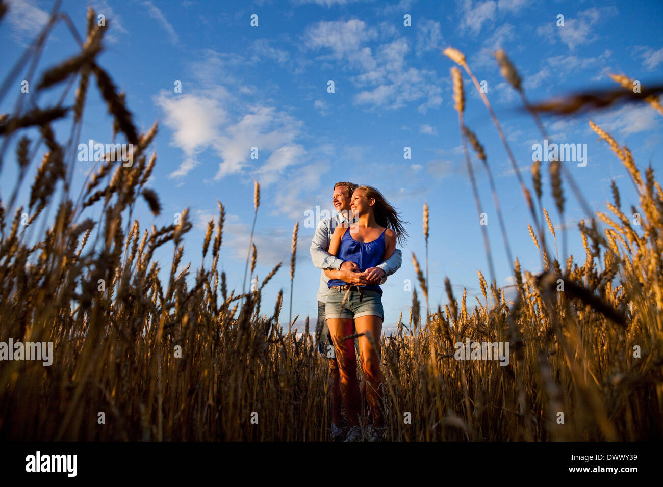 Affectionate young couple embracing while standing on wheat field Stock Photo