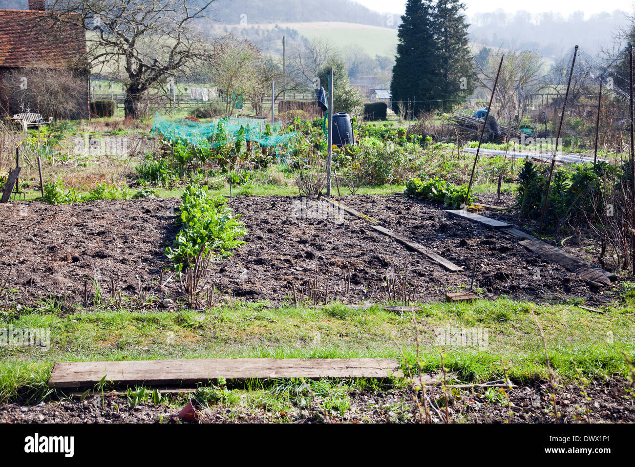 Hambleden Village Allotment in Buckinghamshire in UK - Stock Image