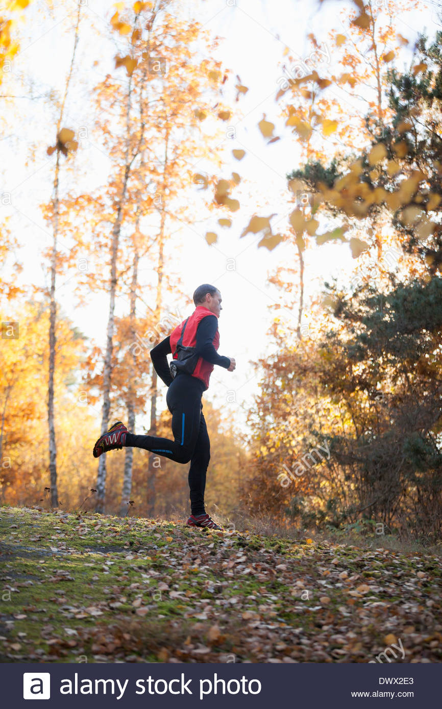 Full length of mid adult man jogging in forest - Stock Image