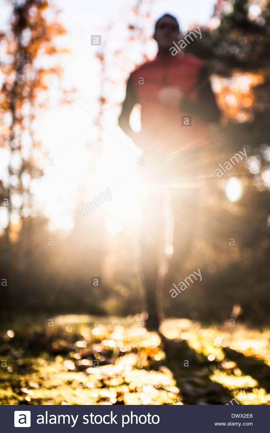 Defocused imaged of man jogging in forest - Stock Image