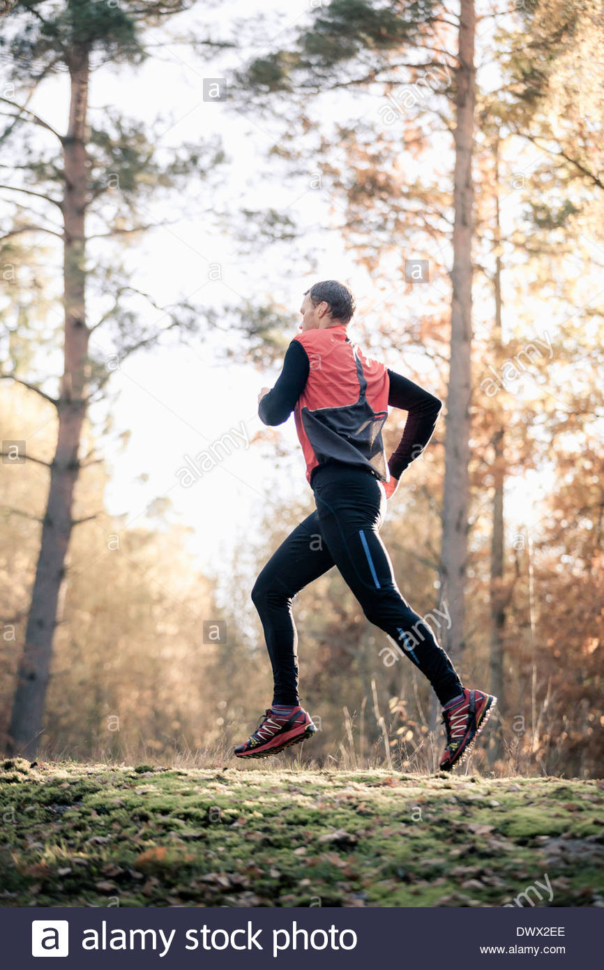 Full length of jogging in forest - Stock Image