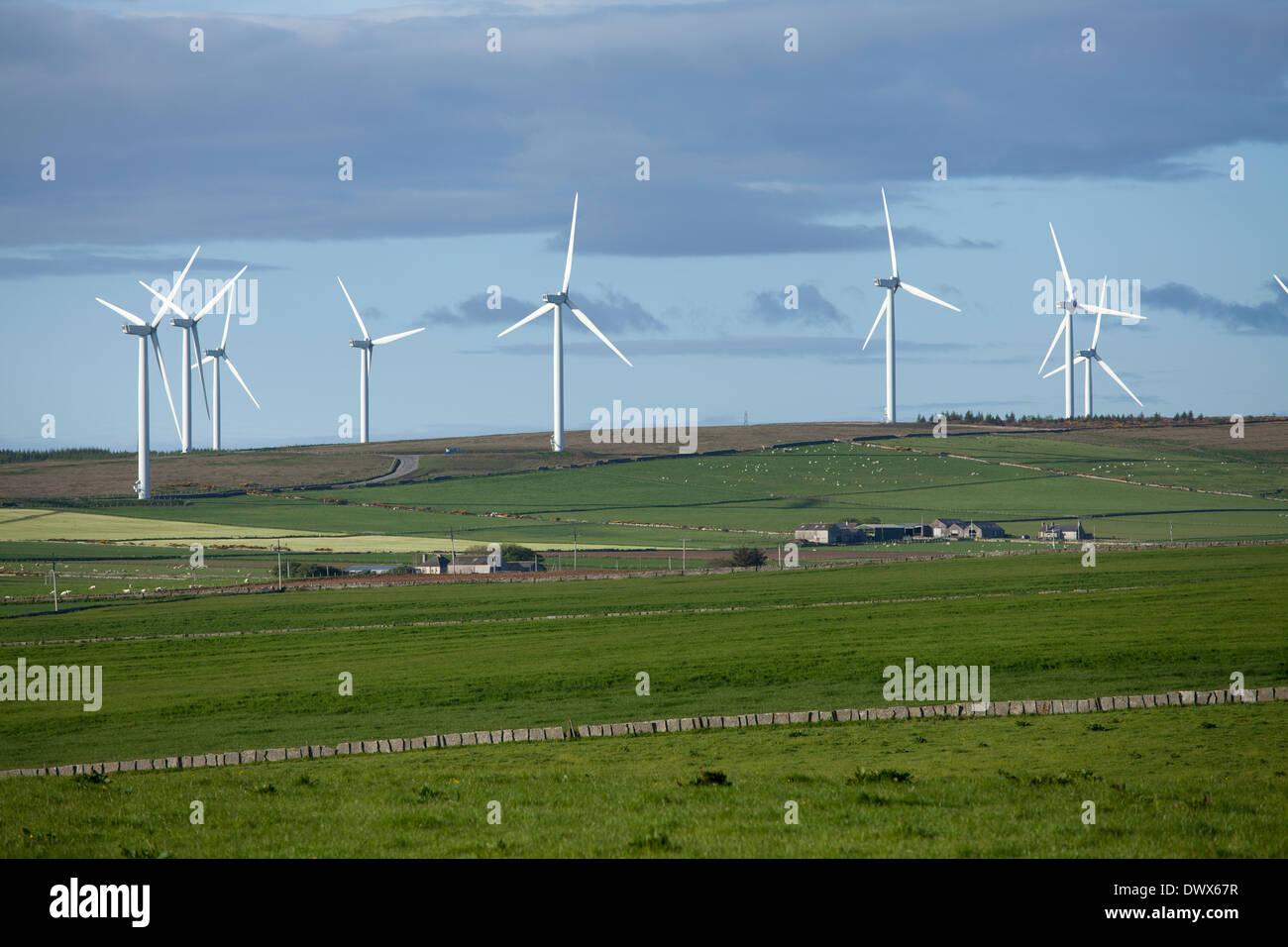 Baillie Wind Farm, near Dounreay, Thurso, Caithness Scotland - Stock Image