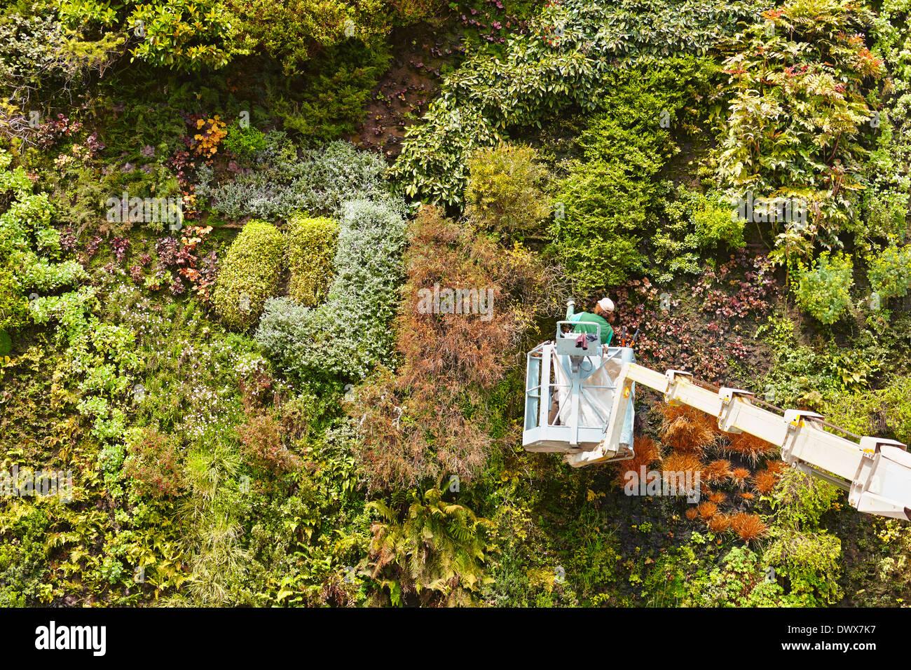Caixaforum madrid stock photos caixaforum madrid stock images alamy - Garden center madrid ...