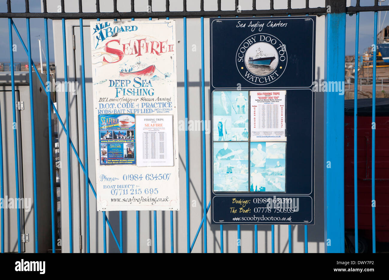 Signs for deep sea fishing trips at Watchet, Somerset, England - Stock Image
