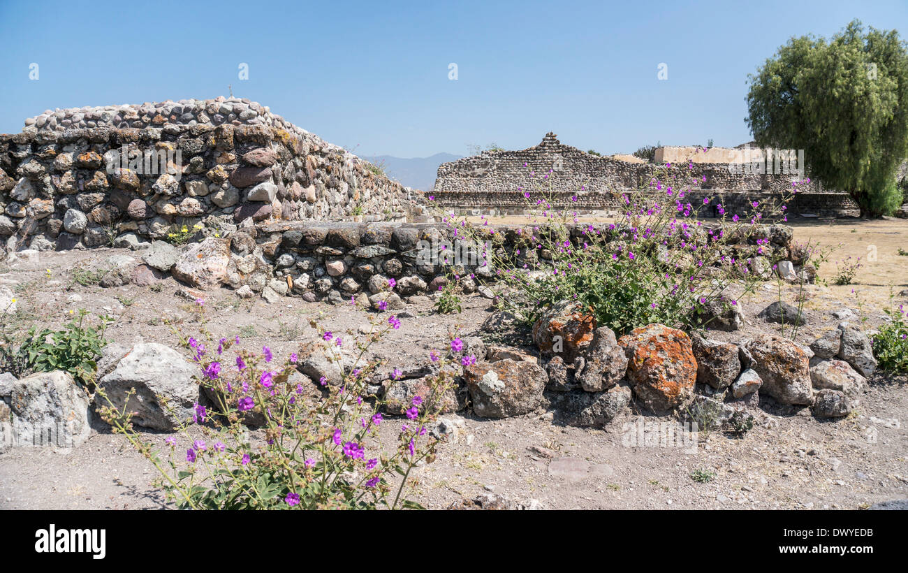 view north across Patio 1 of ruins of the ancient city of Yagul to front of Council Chamber with Palace of 6 Patios in distance - Stock Image