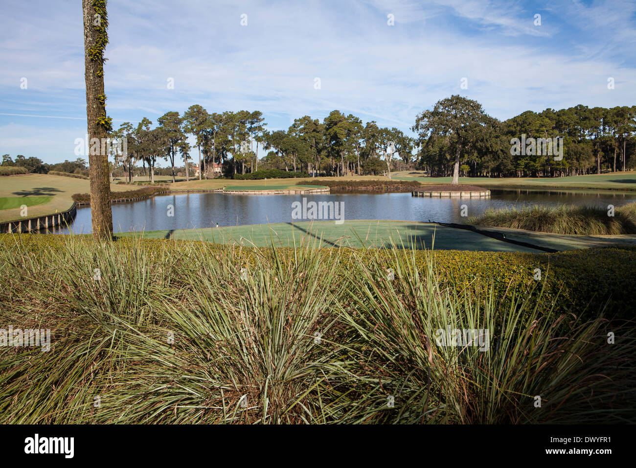 The famous 17th Island Green hole of TOC Sawgrass Stadium course is pictured in Ponte Vedra Beach, Florida - Stock Image