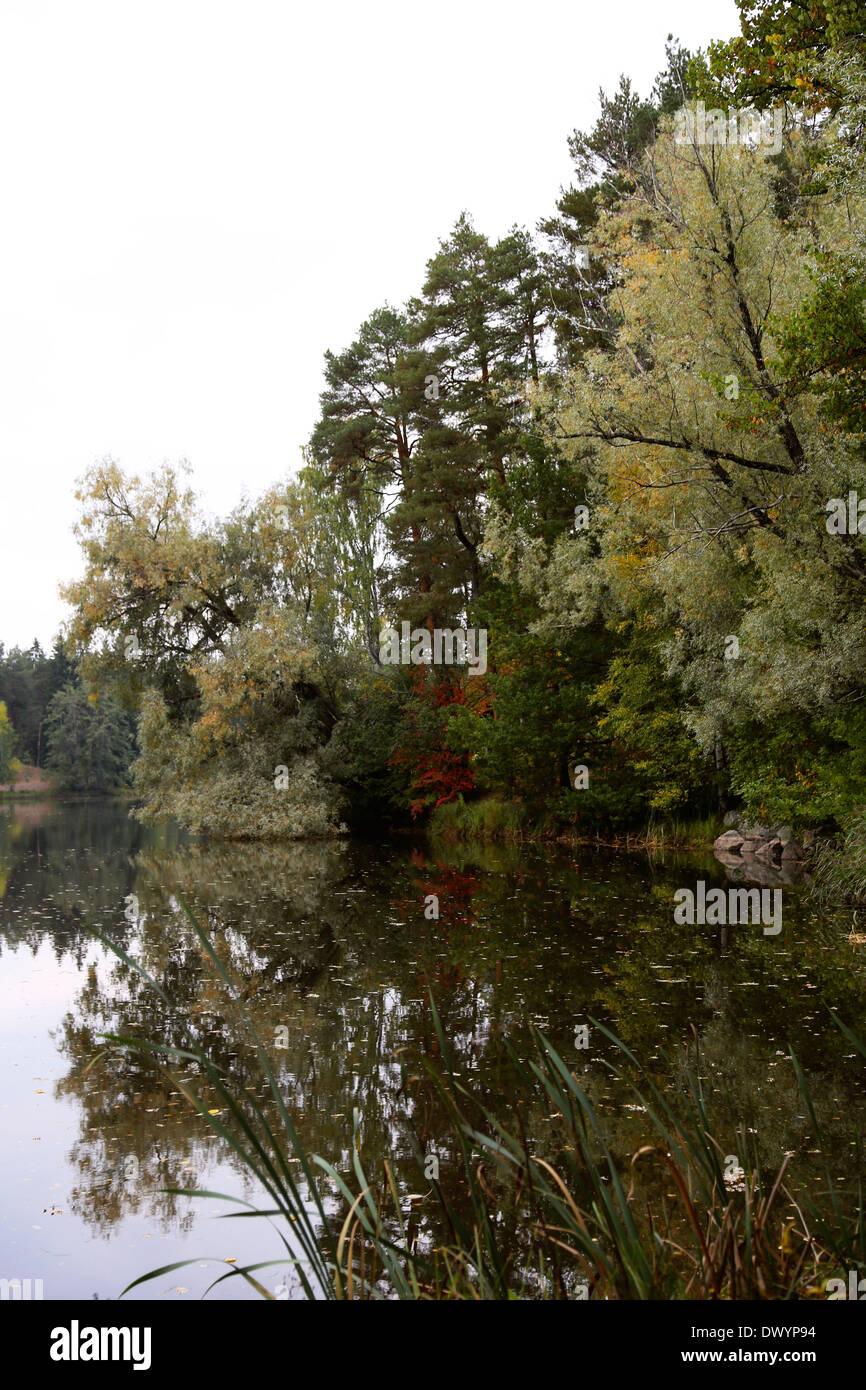 River scenery in autumn in Finland Stock Photo