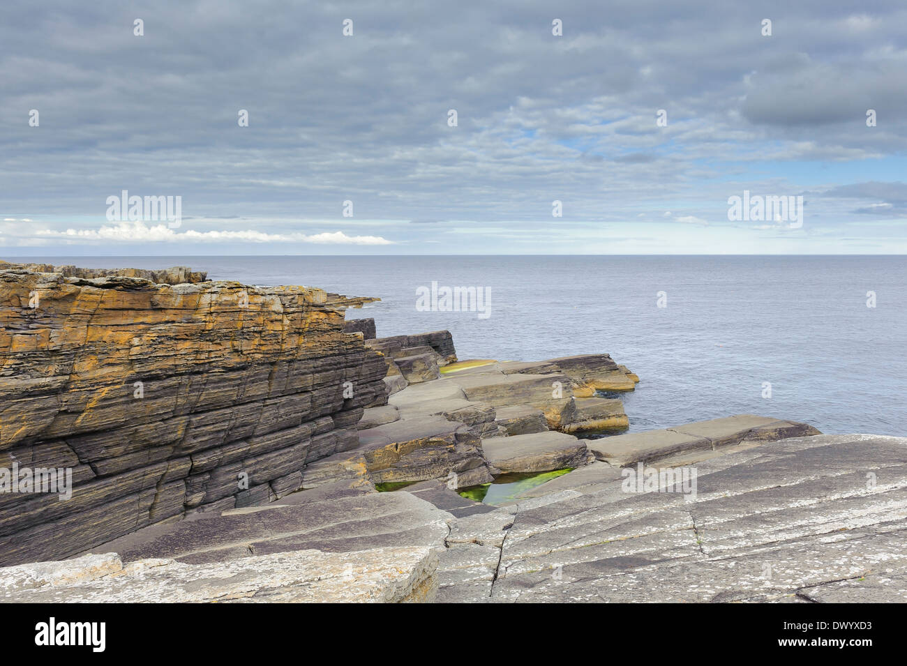 Layered sandstone rocks on the coast at Wick, Caithness, north Scotland. - Stock Image