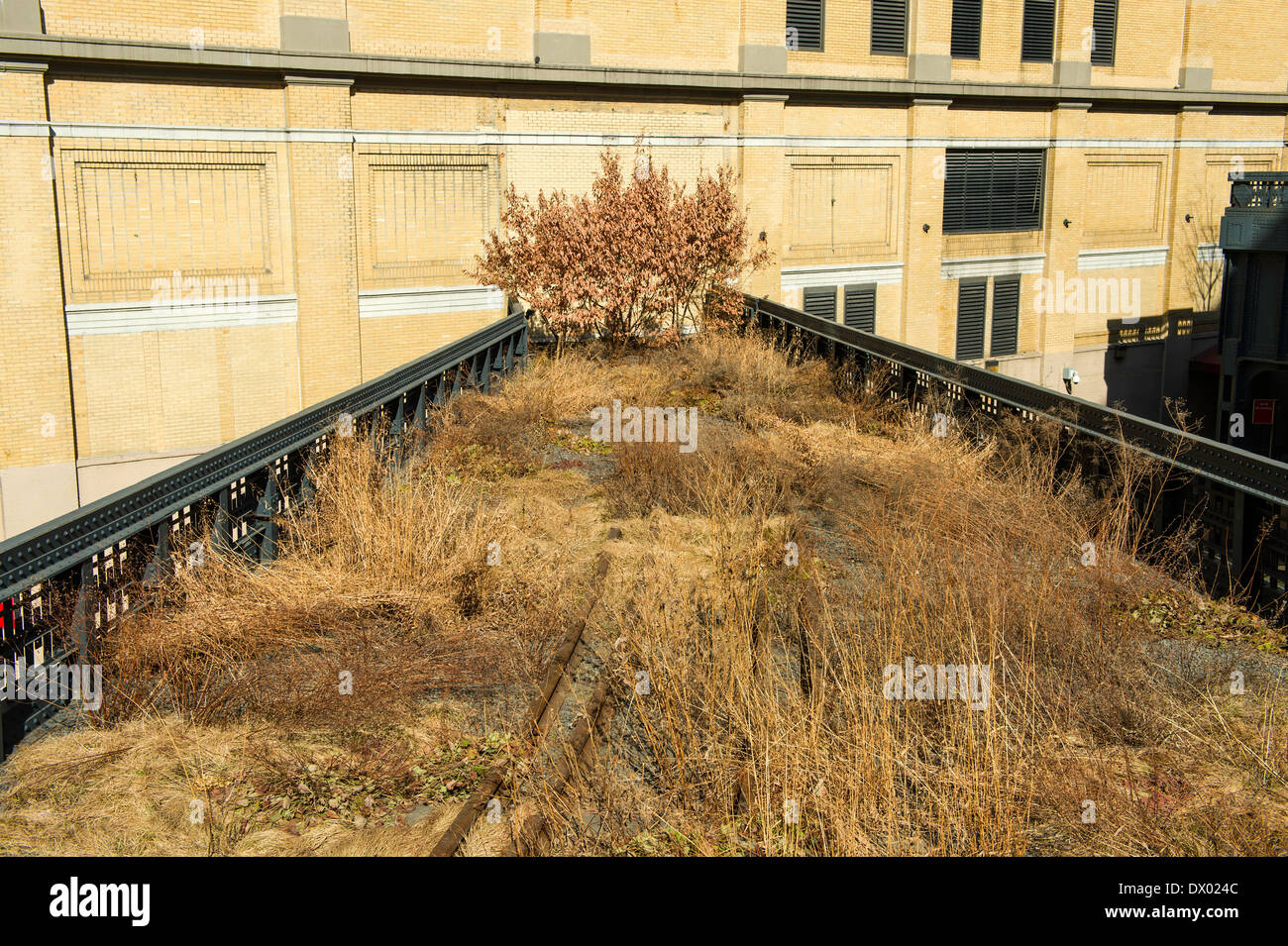 Spur of New York's High Line Park, created on a disused stretch of elevated New York Central Railroad line in west Manhattan. - Stock Image