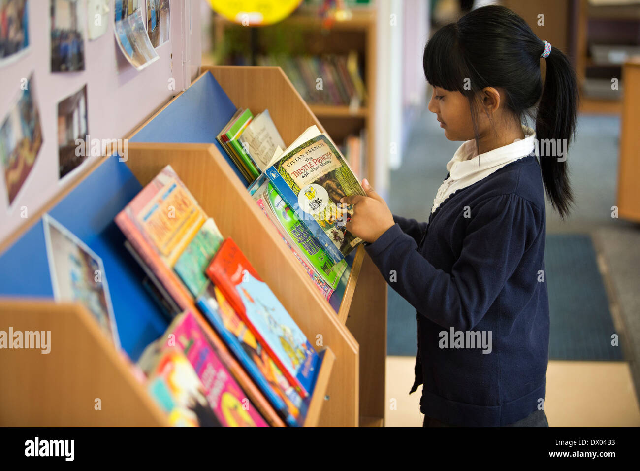 An Asian primary school pupil reading next to a book shelf in the UK - Stock Image