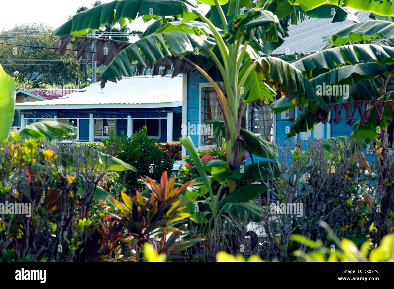 village house, Apia, Samoa - Stock Image