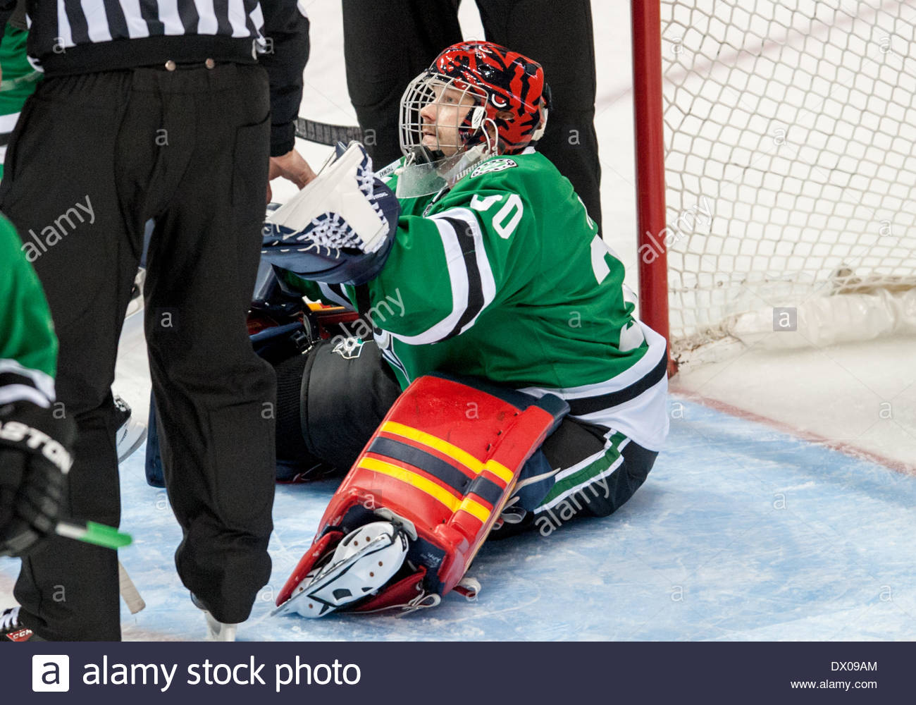 Image result for tim thomas nhl