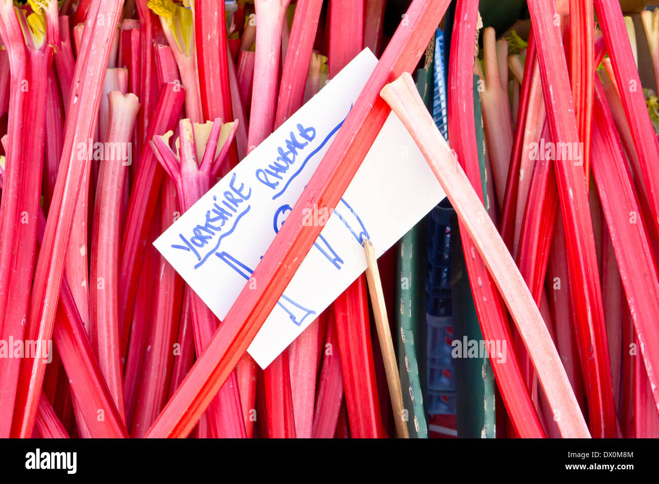 Fresh rhubarb for sale at a market Stock Photo
