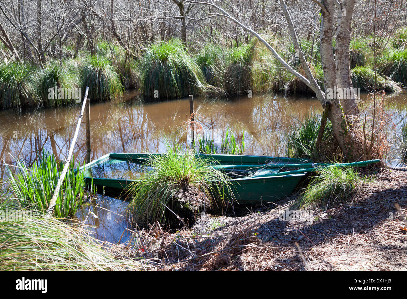 The shallow outlying marshes of the Leon pond (France); only a flat-bottomed small boat allows to circulate through them. - Stock Image