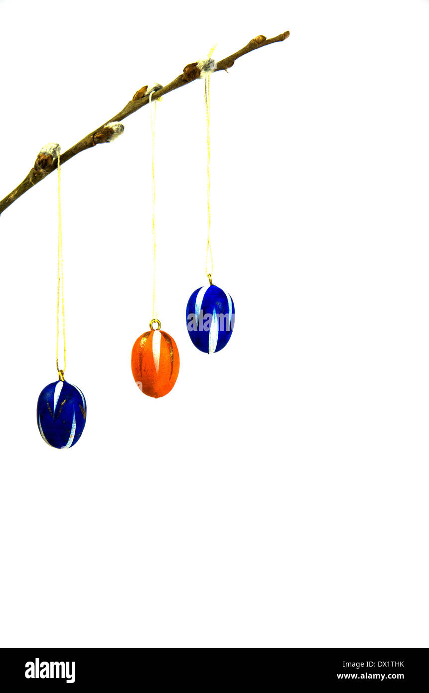 Coloured easter eggs decoration hanging in a twig and isolated on white - Stock Image