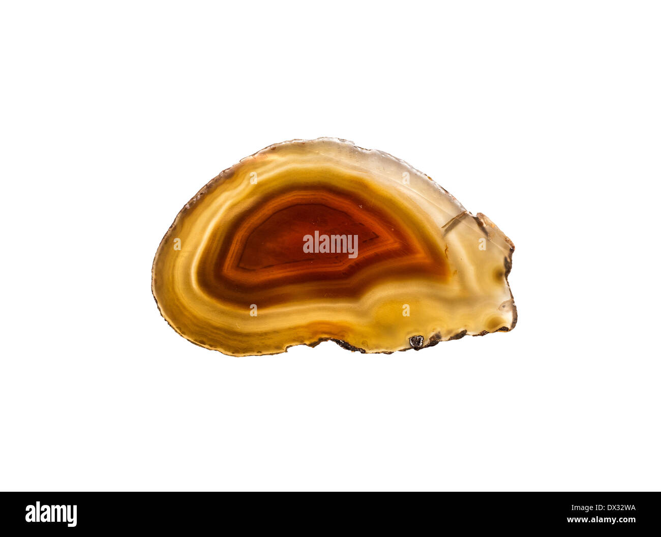Slice of polished natural (unstained) Agate - Stock Image
