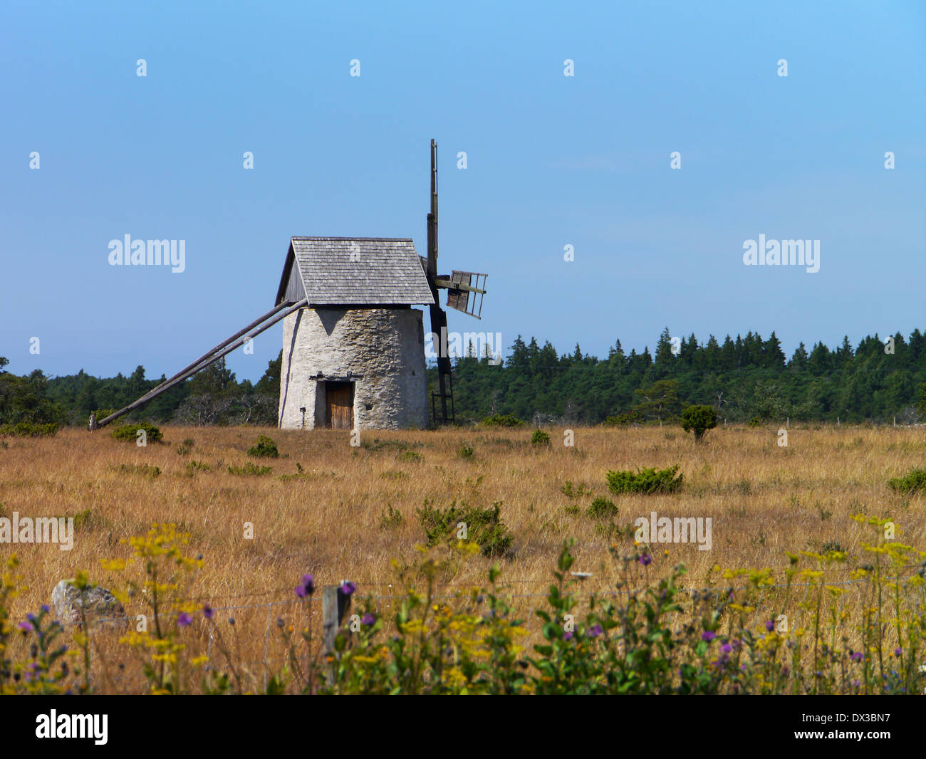 old windmill on gotland, gotlands län, sweden - Stock Image