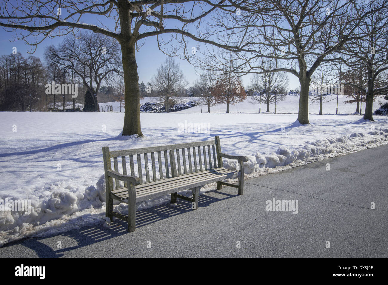 Empty Park Bench, Cold Winter Day - Stock Image