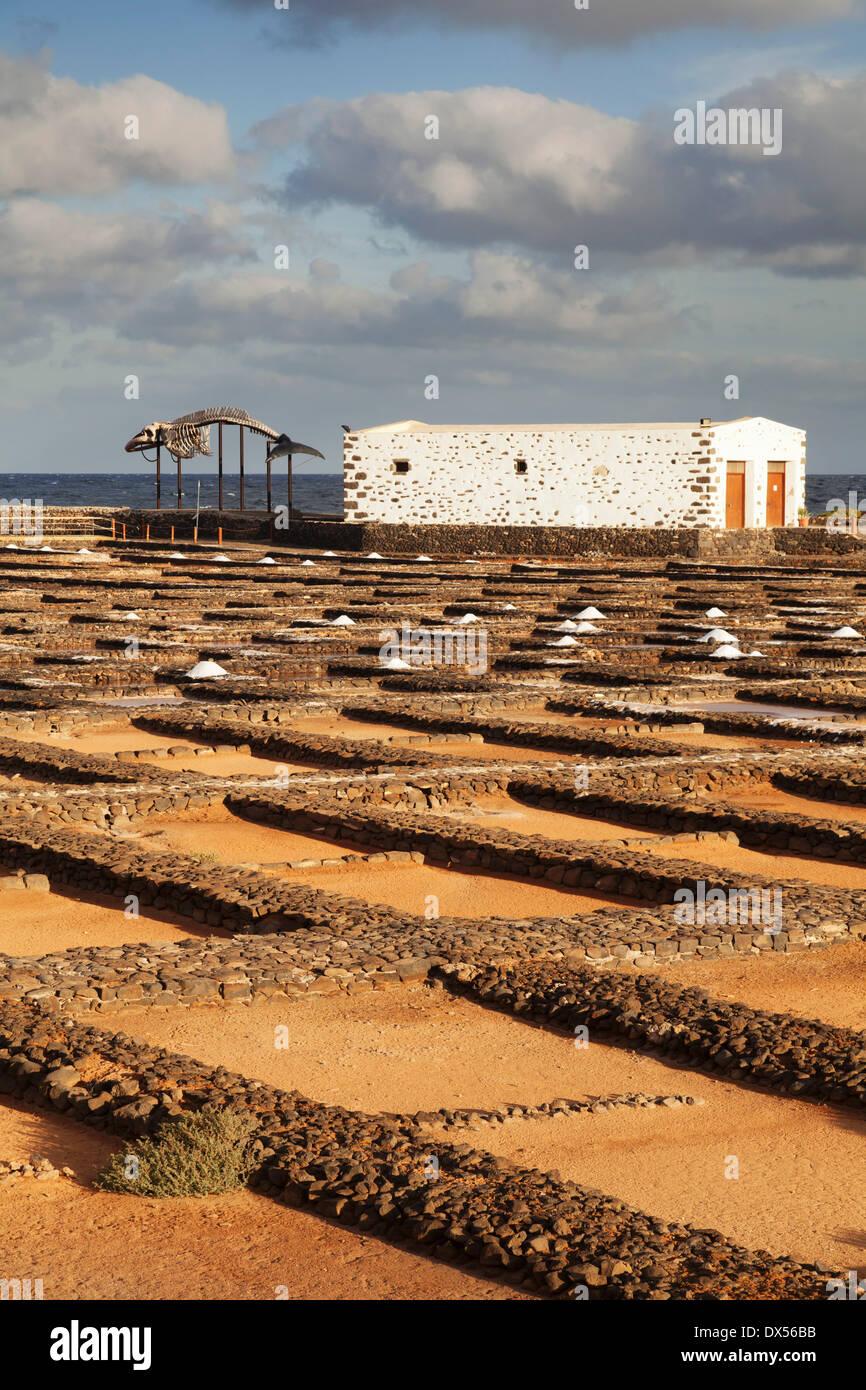 Mining Canary Islands