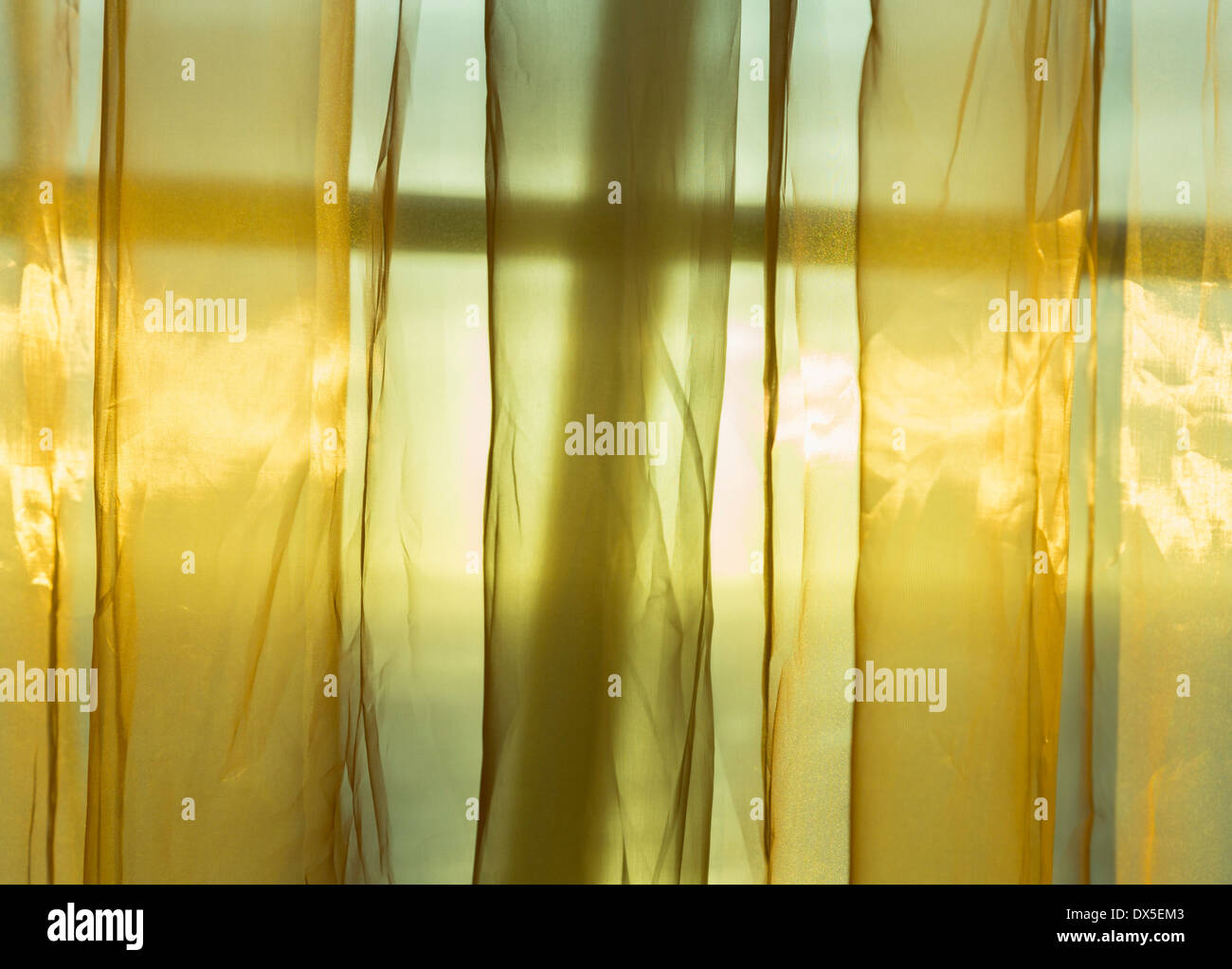 Sunlight through window streams into a room through thin golden net curtains - Stock Image