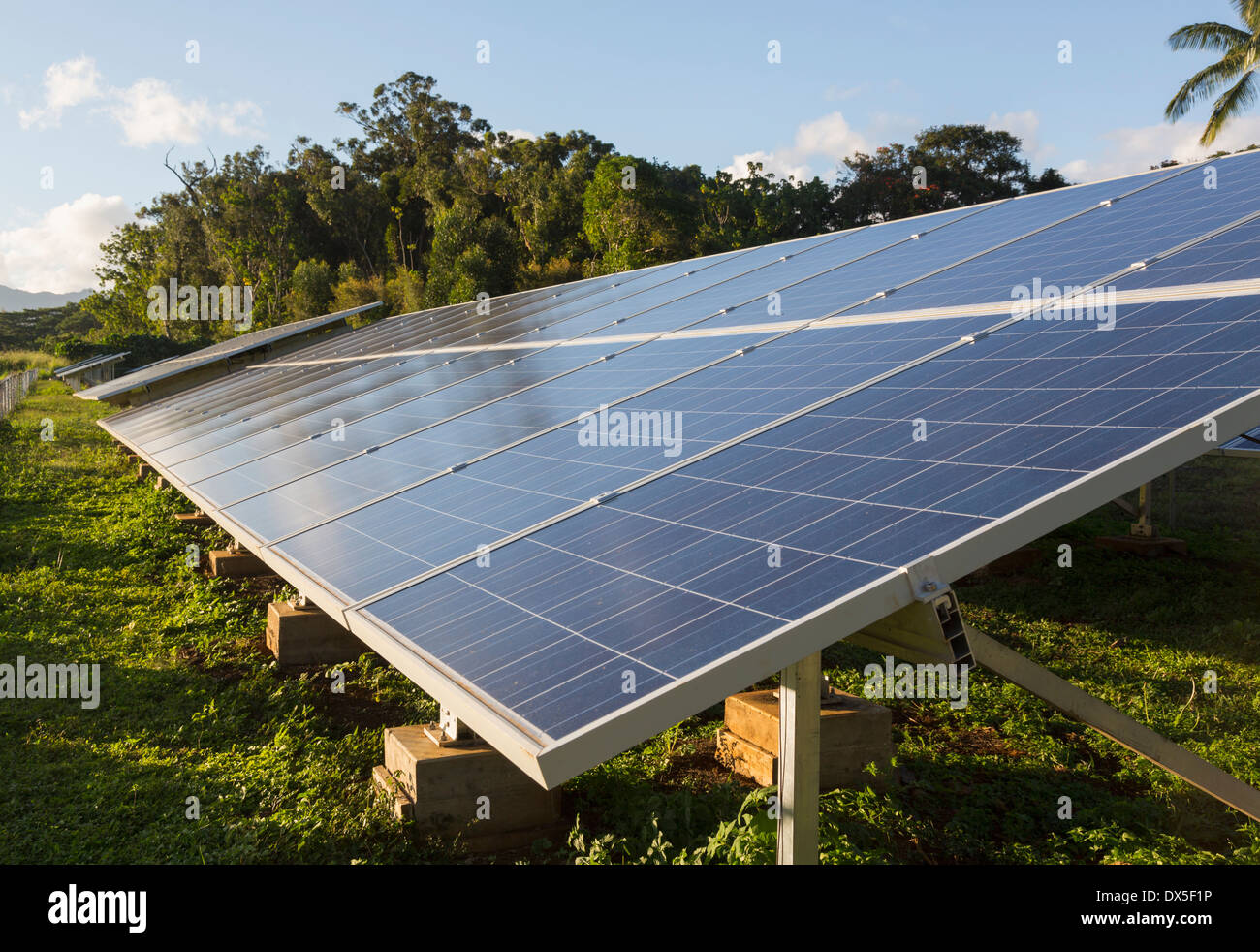 Large industrial solar power panel installation in a tropical environment - renewable energy - Stock Image