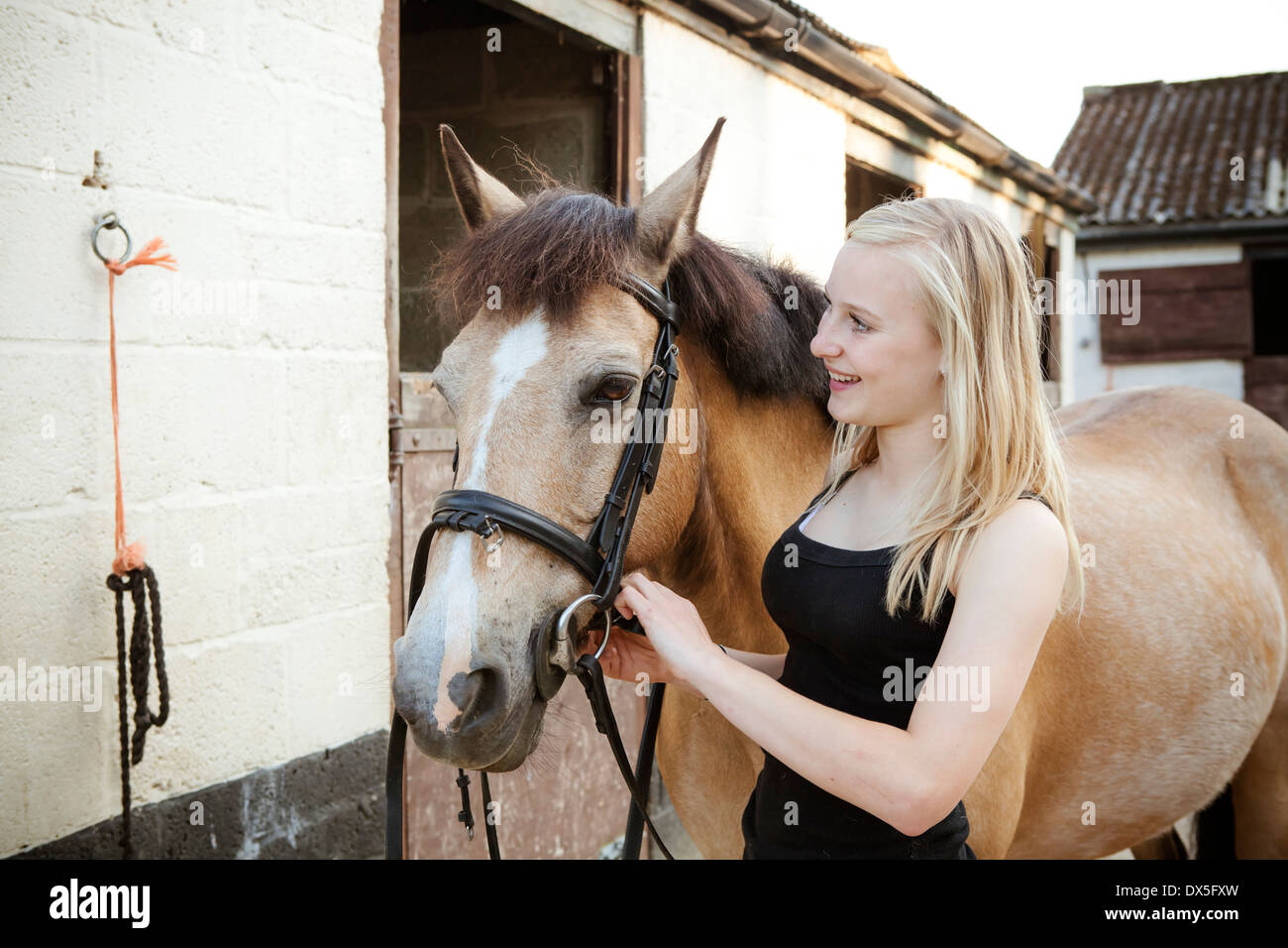 Young blond girl leading a brown horse outside stables - Stock Image