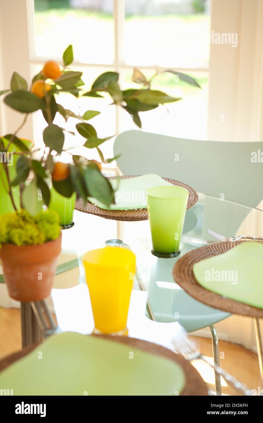 Potted plant on sunny table with place settings - Stock Image