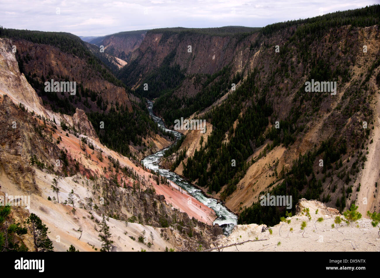 Inspiration Point, looking down on Yellowstone River as it heads down stream through the canyon - Stock Image