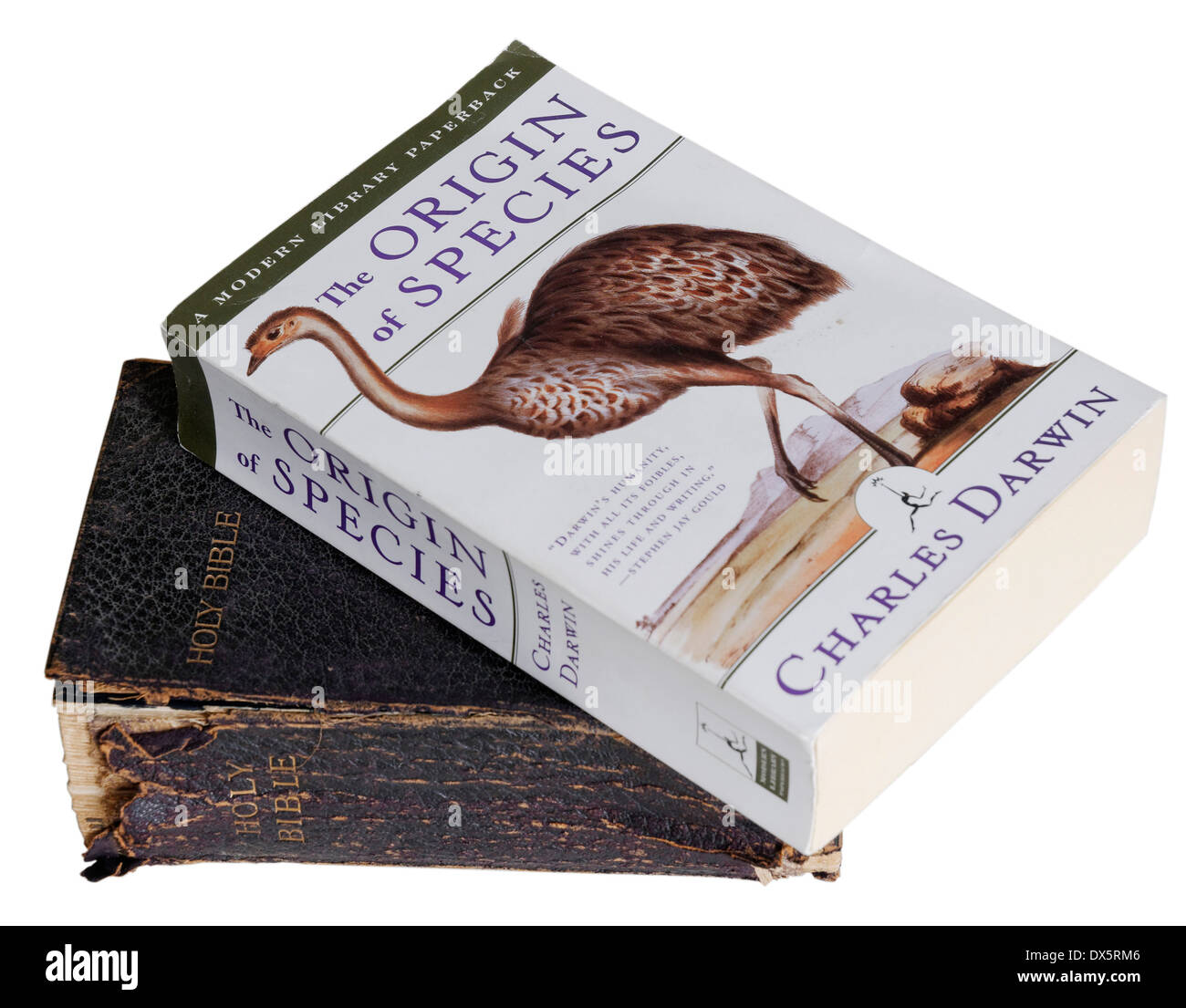 The Origin of Species by Charles Darwin and the bible - Stock Image