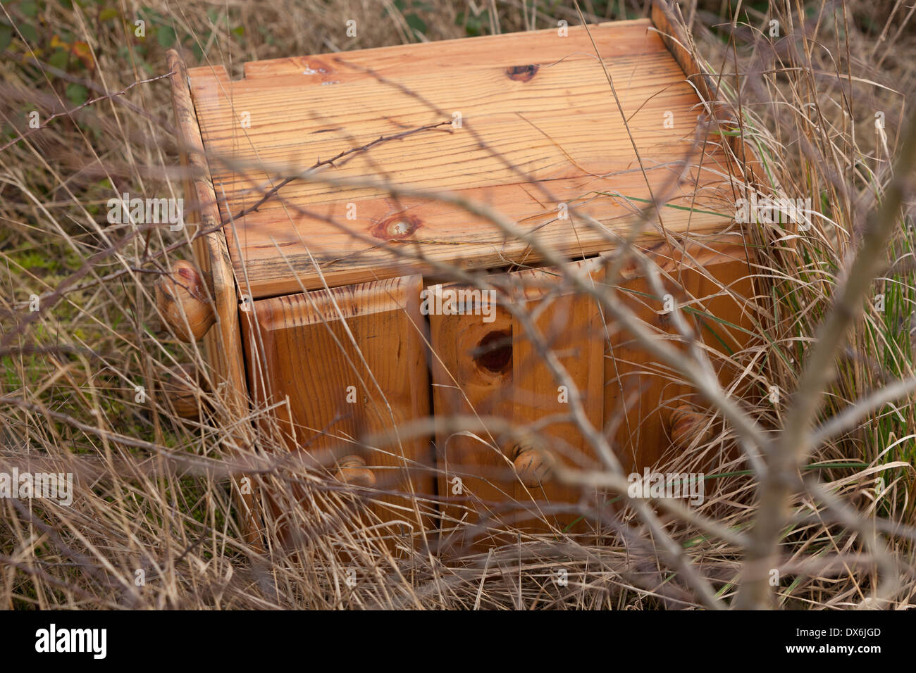 Flytipped bedroom furniture in a hedgerow. - Stock Image
