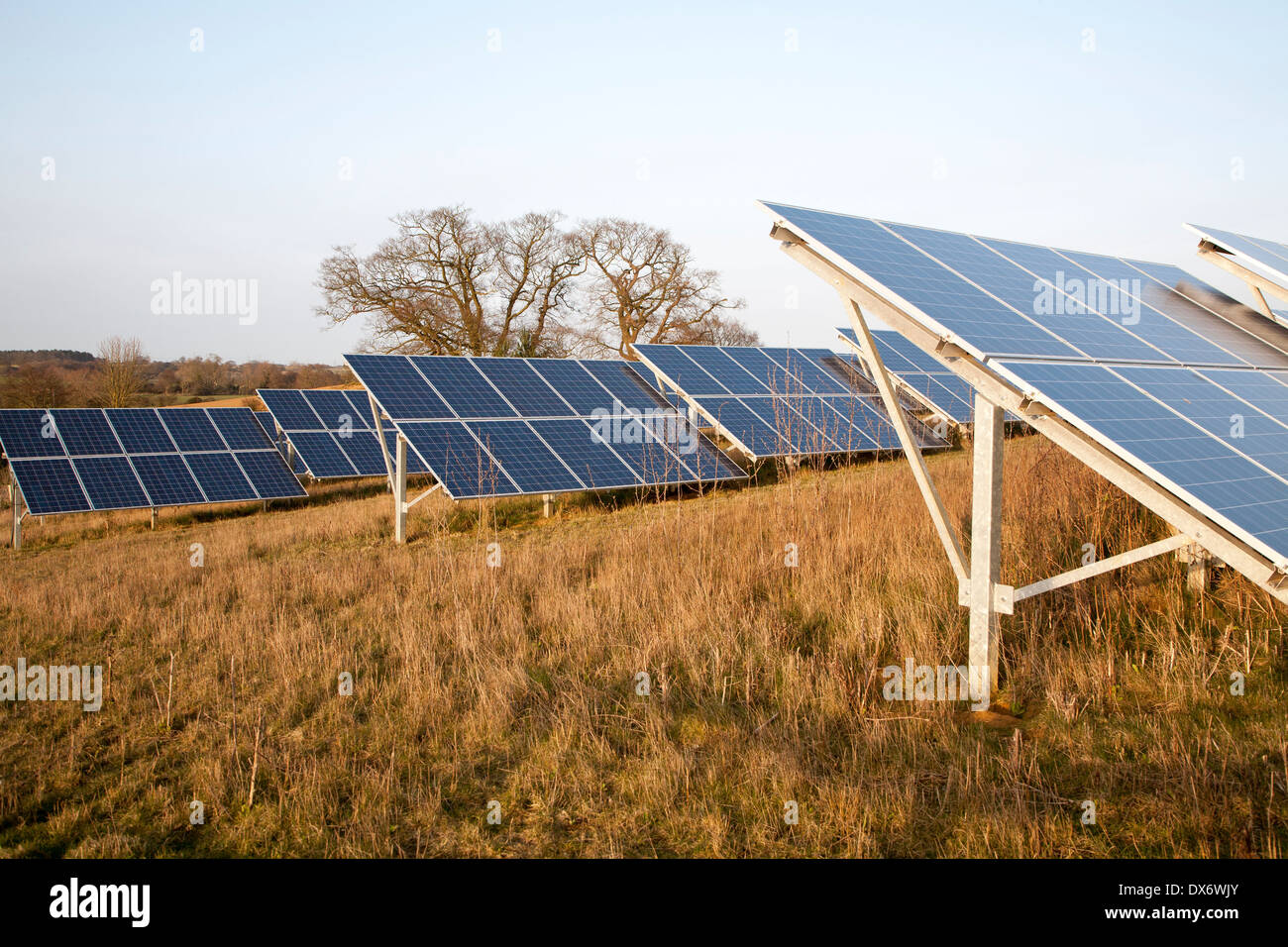 Solar array of photovoltaic panels in countryside at Bromeswell, Suffolk, England - Stock Image