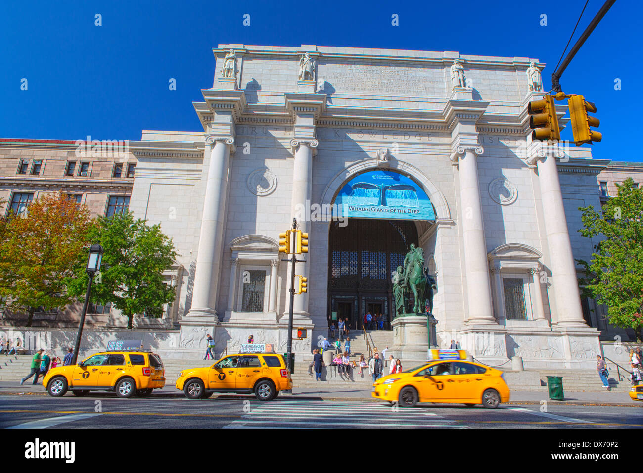 New York city taxis in front of the Museum of Natural History, Central Park West, New York, USA - Stock Image