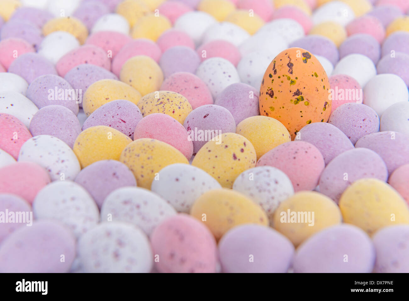 Lots of mini candy covered chocolate Easter eggs with one standing out from the crowd. - Stock Image